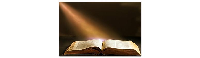 Читая, познаем мир и себя