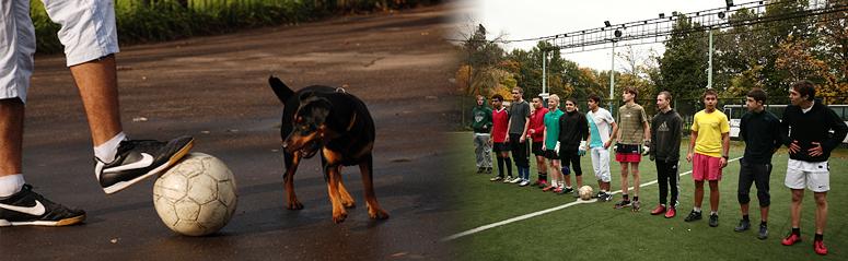 Осенний Чемпионат ИГУМО по футболу – 2012