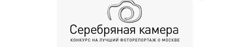 Серебряная камера